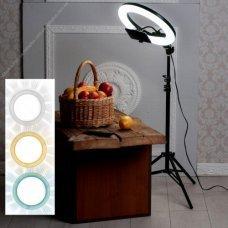 Кольцевая лампа d8 (20 см)